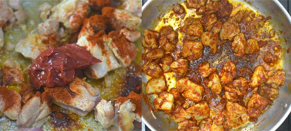 cooking the chicken with paprika and tomato sauce