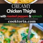 These tender Creamy Chicken Thighs are loaded with flavor! Spinach, roasted peppers, onions, Parmesan, and cream come together to create an absolutely scrumptious sauce. ? tgncooking.com