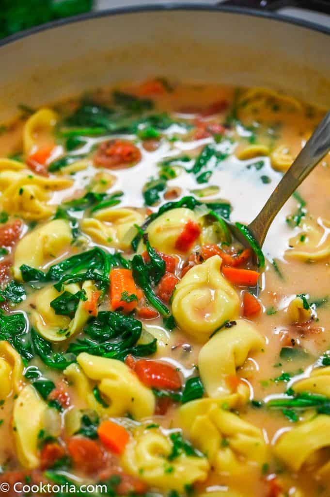 Creamy Tortellini Soup on a laddle
