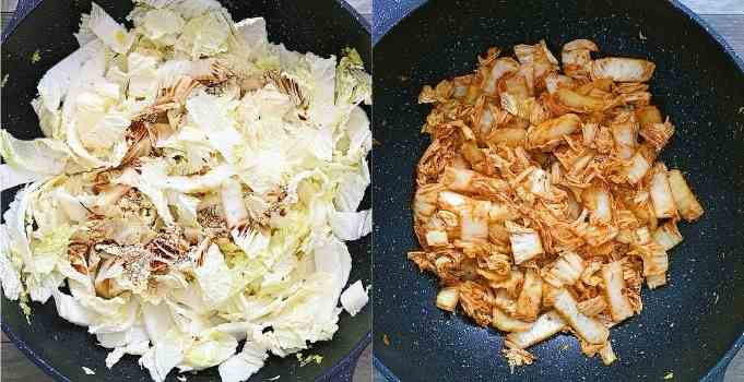 adding cabbage and seasonings